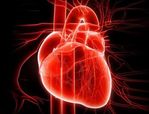 Prendersi cura del proprio cuore: ecco alcuni pratici consigli