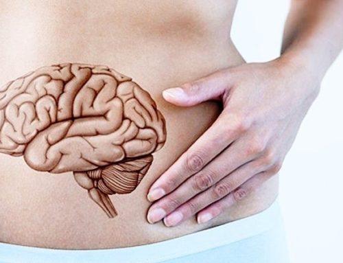 Meccanismo emotivo: l'intestino è il nostro secondo cervello
